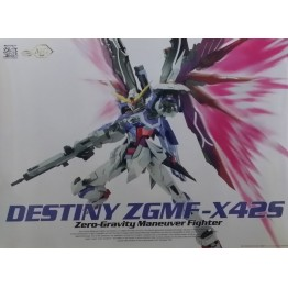 DRAGON MOMOKO 1/100 DESTINY Model Kit with Wing kit