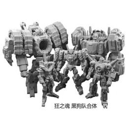 IronFactory IF EX-31 Dubhe
